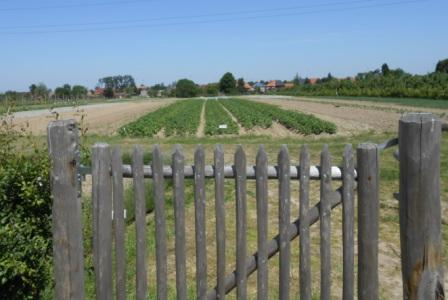 Zelfoogsttuin Hasselt - nieuw oogstjaar 2012 - toegangshek